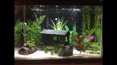 how to make fish tank decorations at home natural fish tank decoration ideas youtube