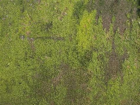 10 grunge hintergrund texturen kostenloser download