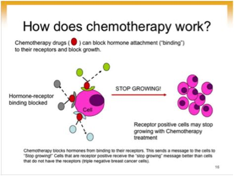 explanation of how chemotherapy works