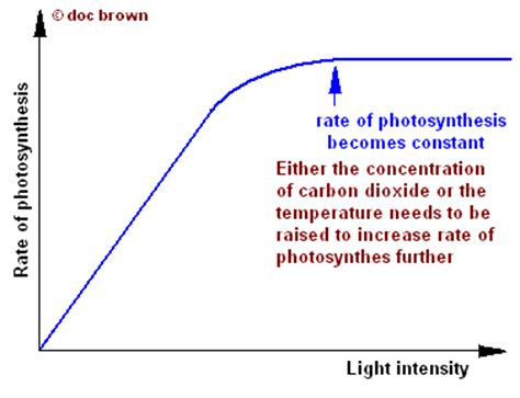 How Does Light Intensity Affect Photosynthesis by Scientific Evidence For Selective Defoliation Page 10