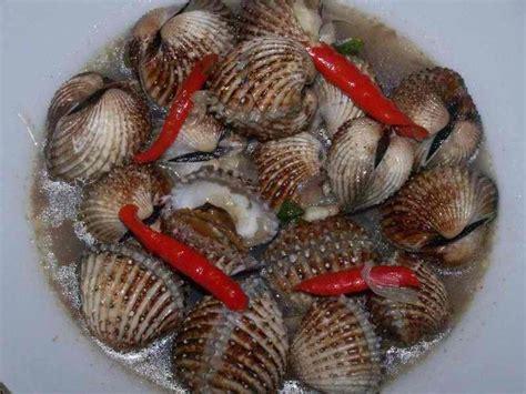 Kerang Rebus kerang rebus boiled cockles something south east asian thai ma