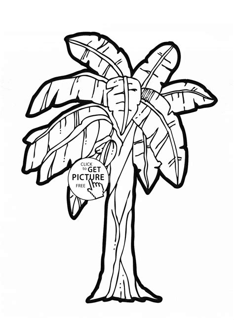 coloring page tree with fruit banana tree fruit coloring page for kids fruits