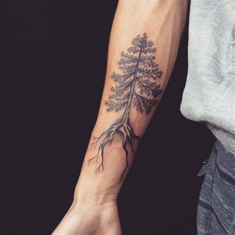 tattoo arm length pine tree forearm length tattoo with long roots