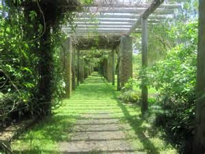 Fairchild Botanical Gardens Wordless Wednesday Fairchild Botanical Gardens Vines