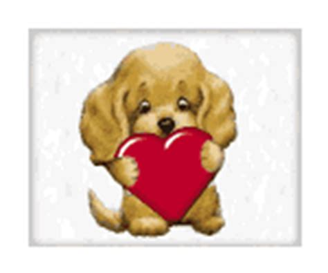 gif de amor familiar im 225 genes animadas de animales gifs de amor gt animales