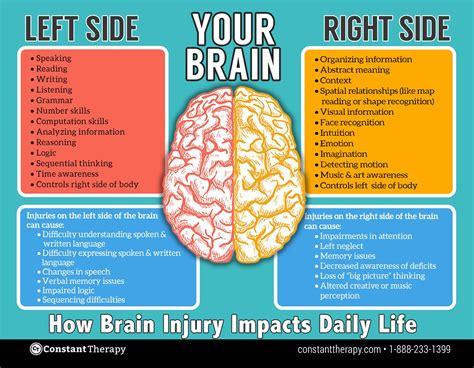 Brain Left Or Right left side vs right side of brain brain injury or stroke