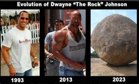 dwayne the rock johnson then and now the rock dwayne johnson then and now wwe wwf action