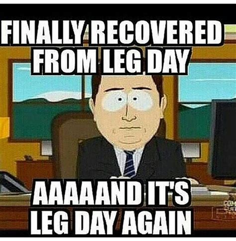 Leg Day Meme - 25 best ideas about leg day memes on pinterest leg day