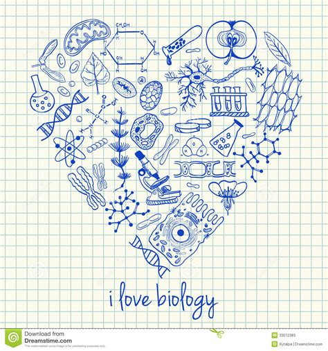 doodle drawing illustrator biology drawings in shape stock photos image 33012383