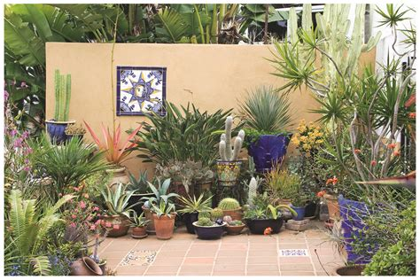 Decorating Patio With Potted Plants by Book Report Succulent Container Gardens Rancho Reubidoux