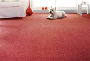 teppich boden teppichboden