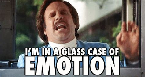 Glass Case Of Emotion Meme - social strategy for anchorman 2 redefines film marketing