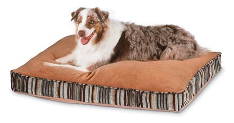large dog beds cheap discount dog beds for large dogs memory foam dog beds for