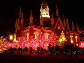 amazing christmas lights display images