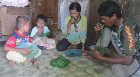 lima tahun keluarga miskin ini hanya makan daun daunan okezone news