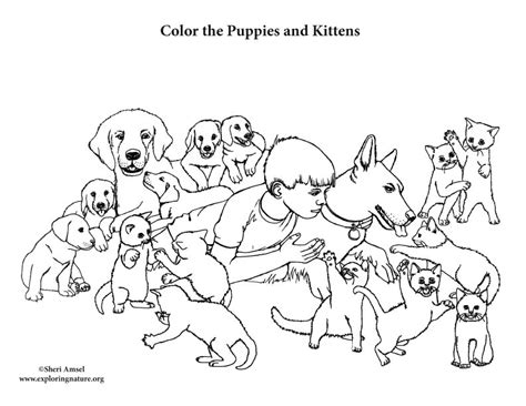 coloring pages of puppies and kittens puppies and kittens coloring page
