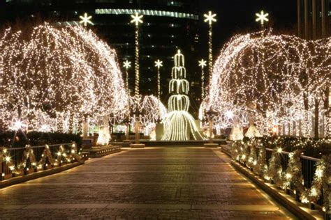 christmas trees in ct 11 best light displays in connecticut 2016