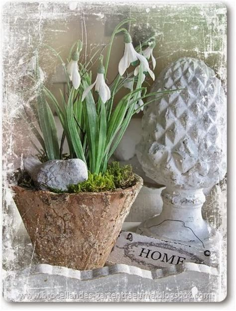 March Hare Cottage by 17 Best Images About On Gardens