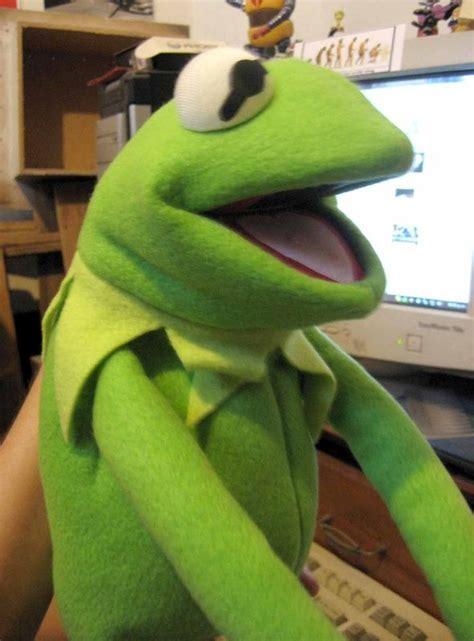 imagenes ironicas de la rana rana rene titere imagui