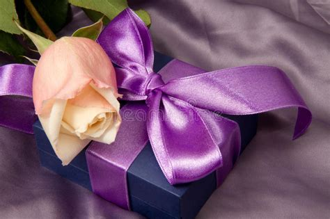 Moodpearl Pink pink roses and gift box stock photo image of