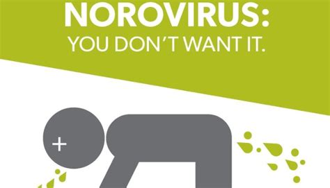 Home Design Consultant by Norovirus The Disturbingly Ugly Facts Linkedin