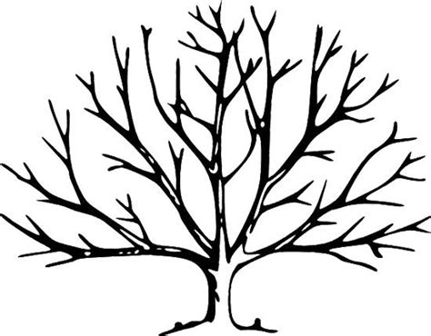 Leafless Tree Branch Outline by Fall Tree Without Leaves Coloring Page Tree Trees How To Draw And A Tree
