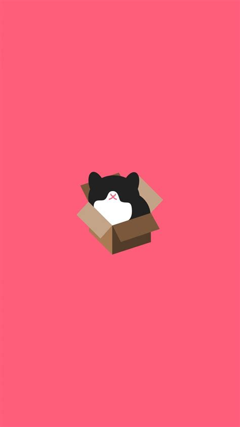cat  animals minimalistic wallpapers  iphone