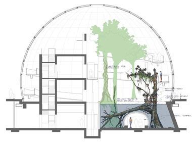 Planetarium Floor Plan california academy of science o jovem arquiteto