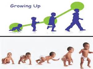 as knows it an exceptional child grows up books tip crawl before you walk works education and
