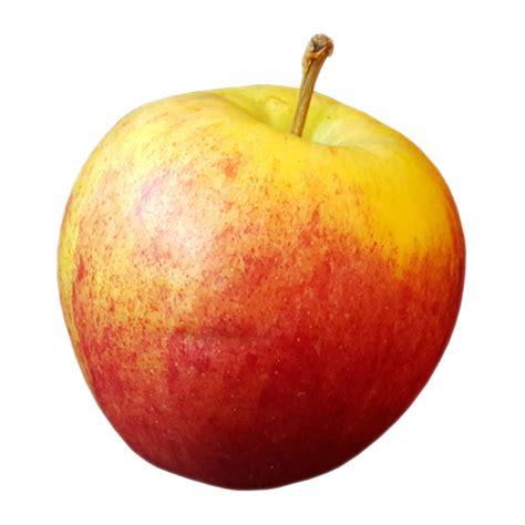 apple wallpaper transparent apple transparent background image
