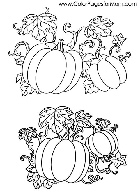 halloween coloring pages advanced advanced coloring pages halloween pumpkins coloring page