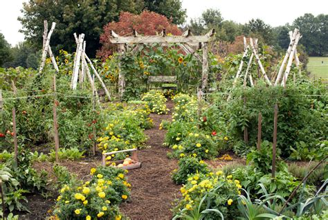 Kitchen Garden Ideas Small Vegetable Garden Design Ideas How To Plan A Garden