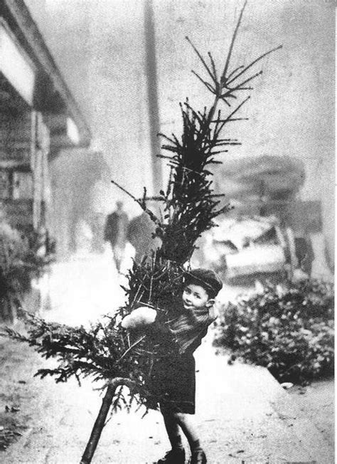 picture boy carrying christmas tree vintagei hope    lovely christmas
