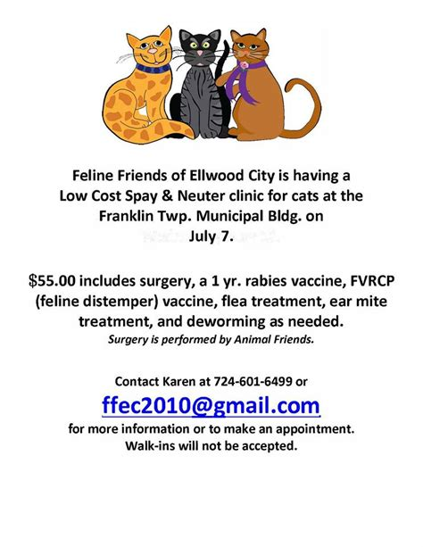 spay cost low cost spay and neuter clinic for cats ellwood city pa news