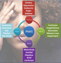 Paws Detox by Bob Craving Relapse To Show To