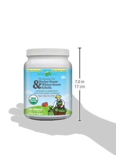 Wheatgrass Powder Detox by Amazing Grass Organic Wheat Grass Powder 60 Servings