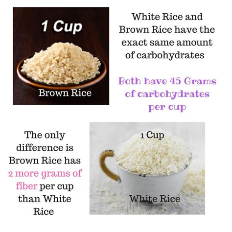 carbohydrates 1 cup rice ten facts about pcos and carbohydrates plano the