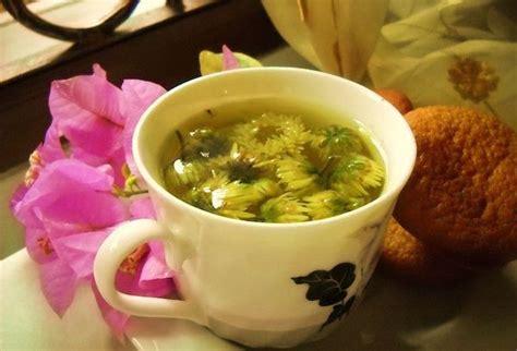 cara membuat yogurt green tea cara membuat teh krisan chrysanthemum tea efek singnya