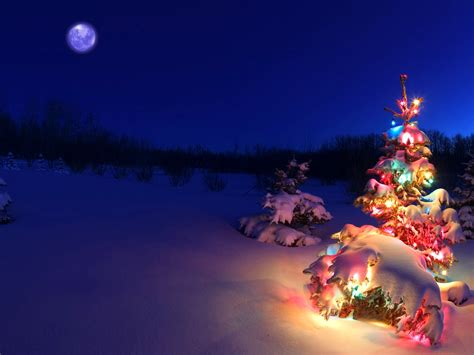 christmas lights snow wallpaper christmas wallpaper