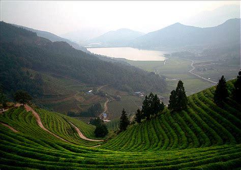Landscape Photography Korea Sarahinsouthkorea Foreign Tourists In Korea