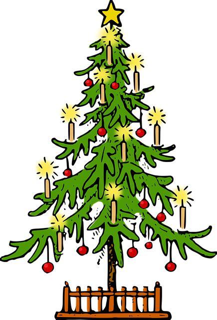 Pohon Natal Berkualitas Tipe Snow White Pine Tree Ukuran 9ft 2 7 Mtr tree conifer 183 free vector graphic on pixabay