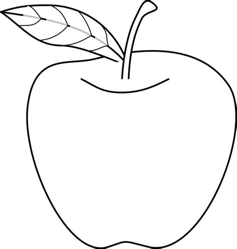 Apple Outline Png by Free Vector Graphic Apple Food Fruit Outline Fruits Free Image On Pixabay 293999