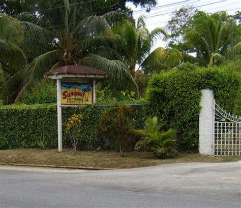 sunquest cottages negril sunquest cottages parrot bed and breakfast