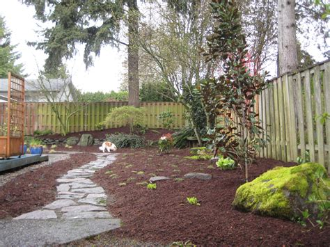 Backyard For Dogs Landscaping Ideas Our Transformed Friendly Back Yard The Adventures Of Kendall The Cavalier