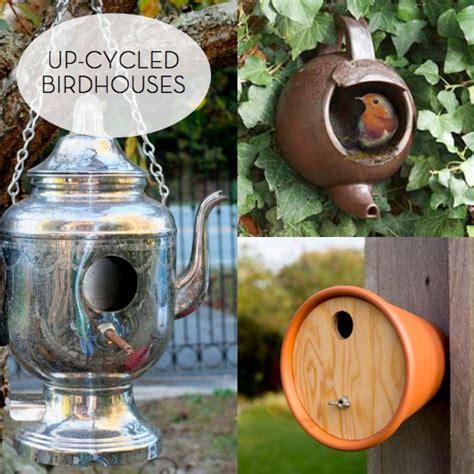 sensational  cycled birdhouses curbly