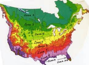 plants and gardening tips 187 gardening planting zones map