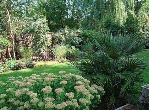 mediterranean garden plants uk 10 best mediterranean plants