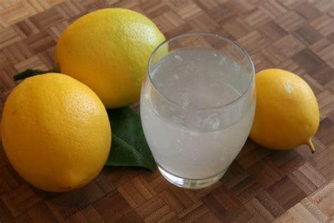 homemade malibu treatment lemonade pics the best homemade lemonade