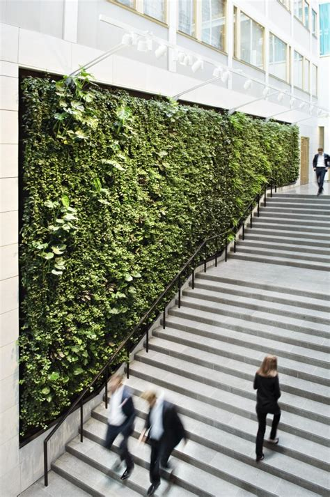 Green Wall Garden Covered With Vegetation Green Wall Info Biologypop