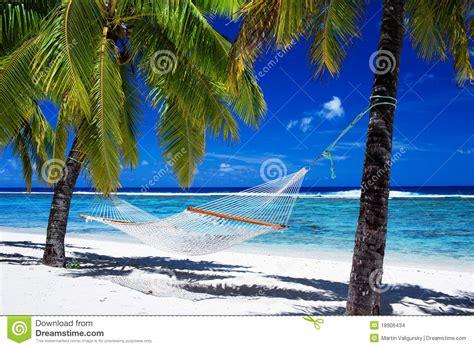 fotos de hamacas en la playa hamaca entre las palmeras en la playa tropical foto de